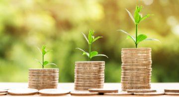 Capital semente: o que é e como conseguir um