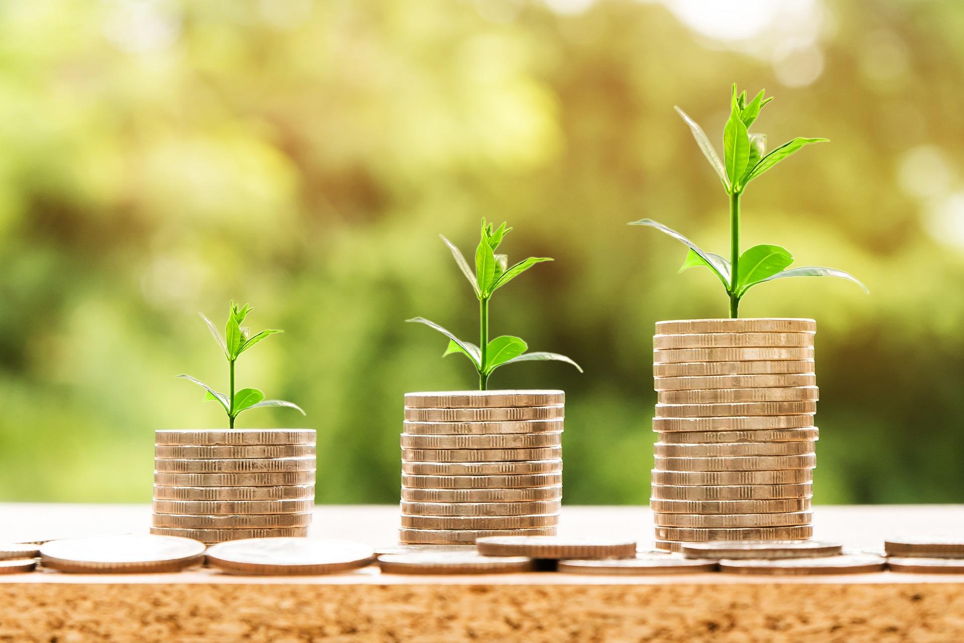 Capital semente é um tipo de investimento