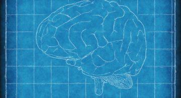 O que é Neuromarketing e como usá-lo para aumentar as vendas